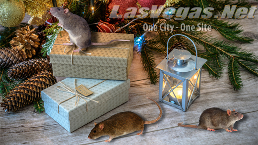 holidaysrodents_520_09