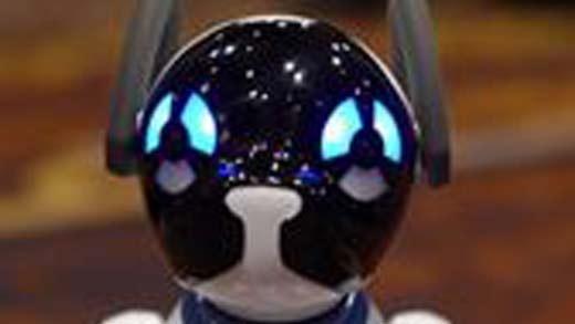 loveablerobotdog_520